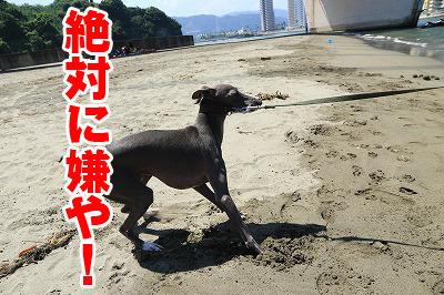 blog_1032.jpg