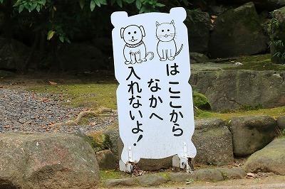 blog_1128.jpg