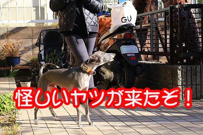 blog_1530.jpg