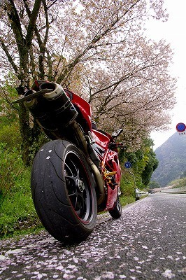 blog_724.jpg