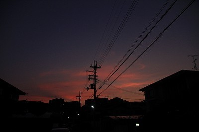 blog_835.jpg